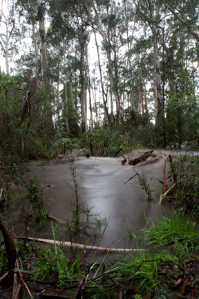 Cathedral Ranges, Floods